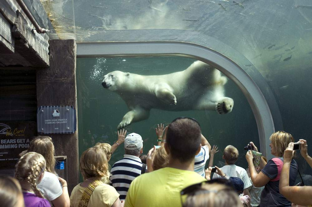 columbus_zoo_and_aquarium_hr-area