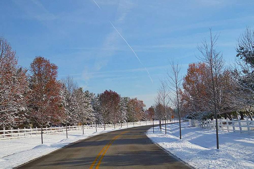 Powell-Winter