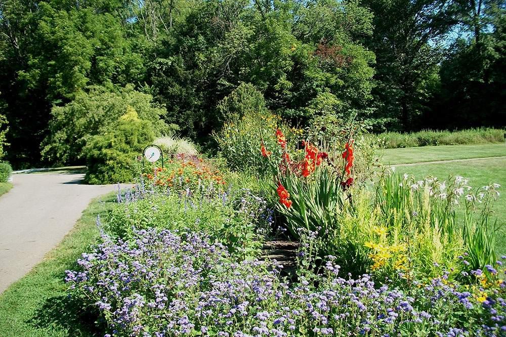 Iniswood-Garden